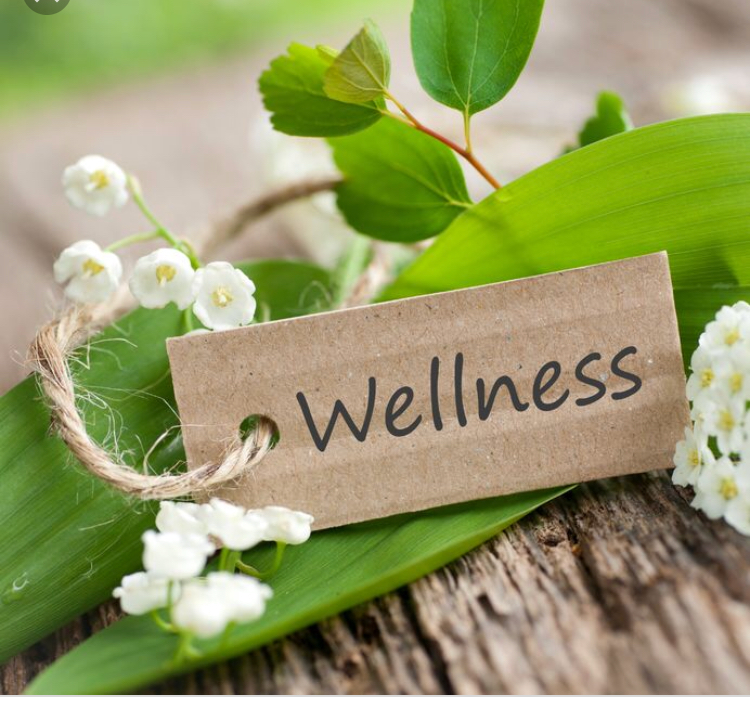 welness Holistic Therapist in Birmingham and Brierley Hill